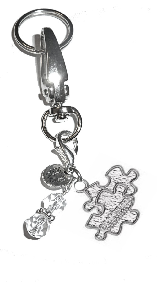Autisms Hidden Gifts >> Autism Charm Key Chain Ring Women S Purse Or Necklace Charm Comes
