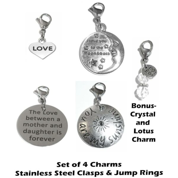 4 pack love mix clip on charms - whimsical charms