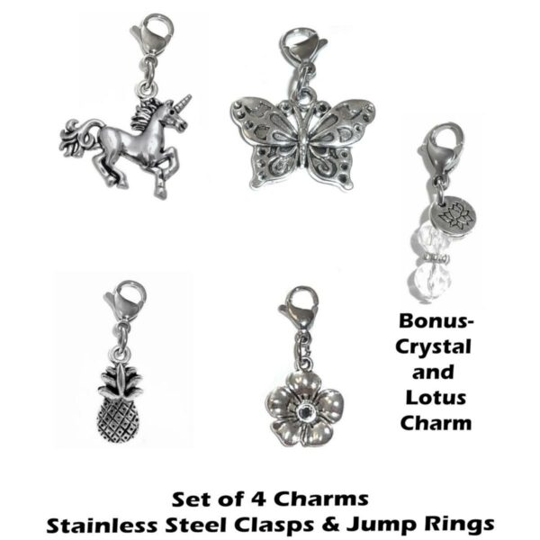 4 pack whimsical clip on charms - whimsical charms clip on anywhere